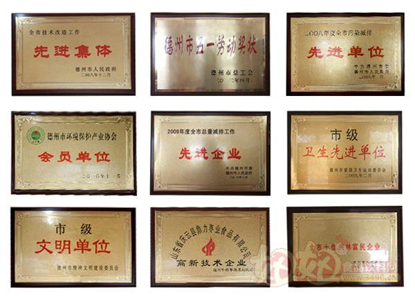 山东鼎力枣业食品集团有限公司资质荣誉