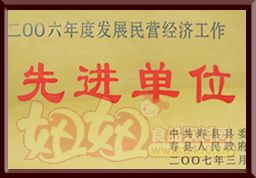 """八公山豆制品""""2006年度发展民营经济工作先进单位"""""""