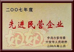 """八公山豆制品""""2007年度先进民营企业"""""""