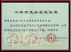 """八公山豆制品""""六安市龙头企业证书"""""""