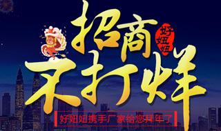 2016年春节专题