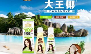 广东大王椰食品有限公司企业专题