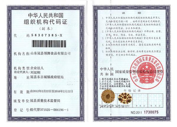 山东领舞食品有限公司组织机构代码证