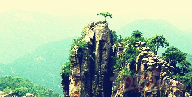巍巍八百里沂蒙,主要由沂山,蒙山,北大山,芦山,孟良崮等高山携带无