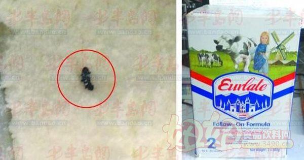 曝光:澳优奶粉中发现小虫