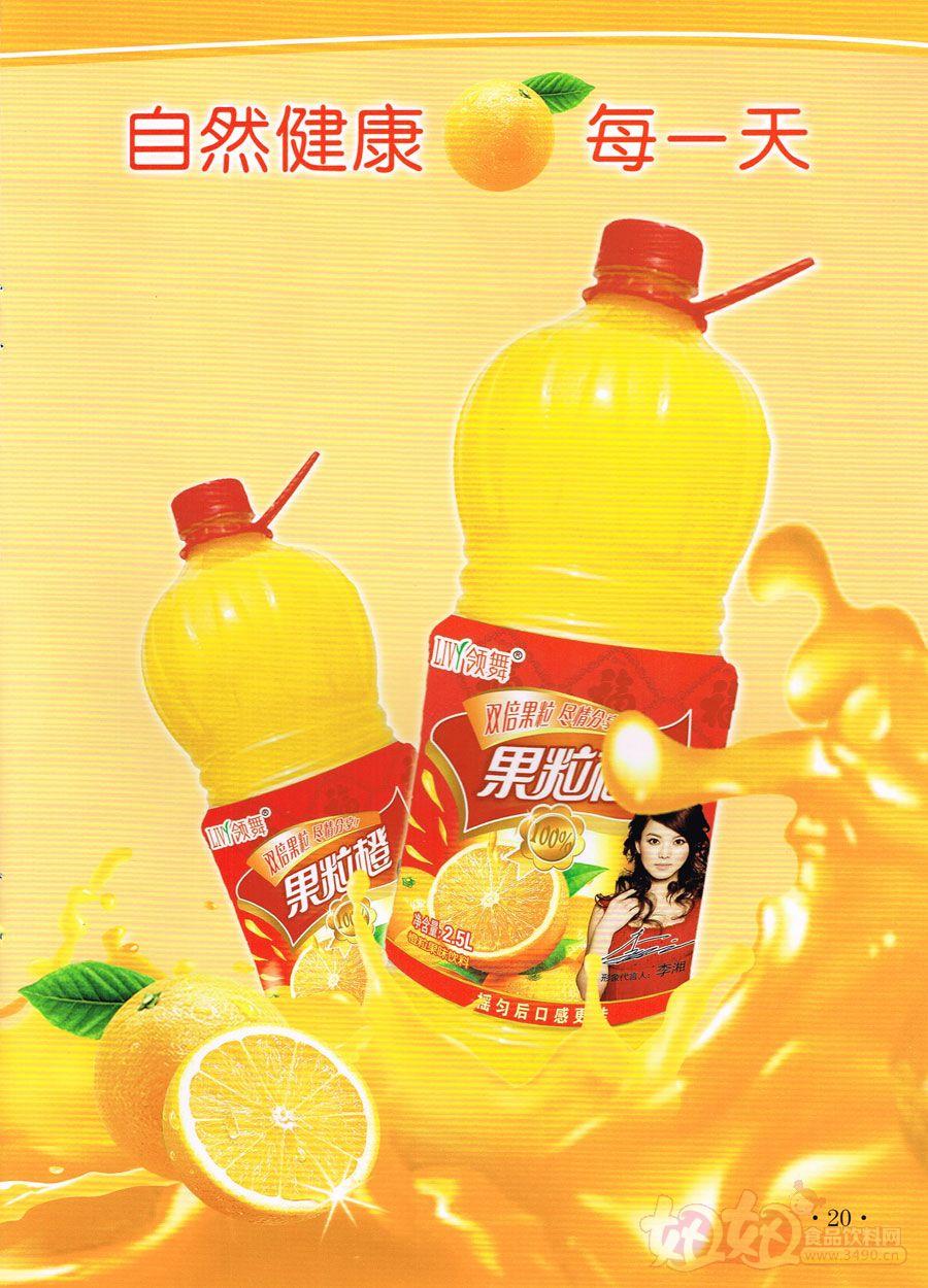 山东领舞食品有限公司果粒橙