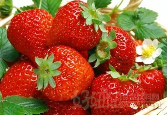 我是可耐草莓君