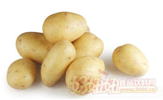 土豆在自然生长过程中会产生多种配糖生物碱,其中最重要的是-茄碱和-卡茄碱,占土豆总配糖生物碱含量的95%.土豆块茎中配糖生物碱含量最低,芽、皮和芽眼周围含量最高。因此食用正常土豆时,摄入的配糖生物碱量无需担心,但如果是发芽的土豆,会导致配糖生物碱摄入量超标而中毒,400毫克的茄碱就能使成年人致命。 来自日本理化学研究所、大阪大学等机构的研究人员最新研究发现,土豆的两个基因PGA1和PGA2分别与-茄碱和-卡茄碱的生物合成途径有关。利用转基因技术抑制这两个基因作用后,土豆中这两种物质的含量会大大降低