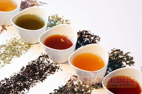 中国医学科学院研究表明经常喝茶可防骨折