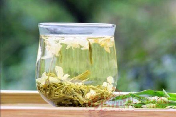 早上喝茉莉花茶好吗