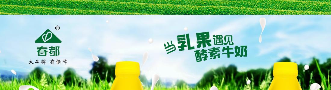 洛阳春都大健康饮品有限公司