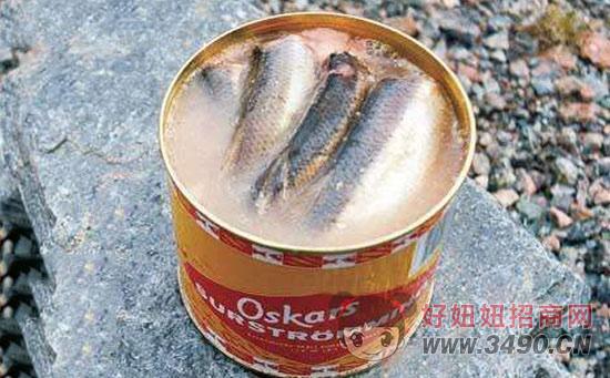 鲱鱼罐头 鱼罐头