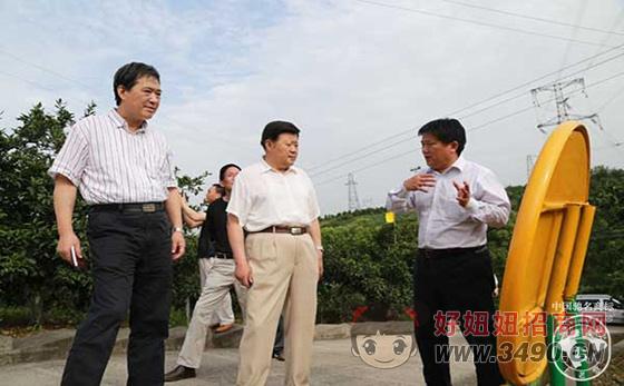聂光富:望土老憨持续稳健发展 带动农民增收致富