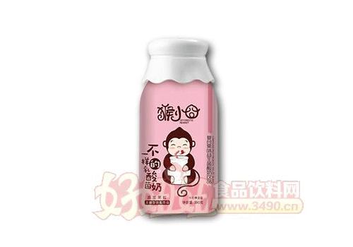 猴小囧不一样的乳酸奶牛奶蓝莓复合果味益生菌酸奶380克