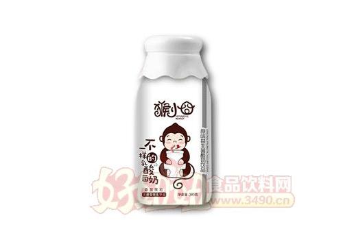 猴小囧不一样的乳酸奶原味益生菌酸奶380克