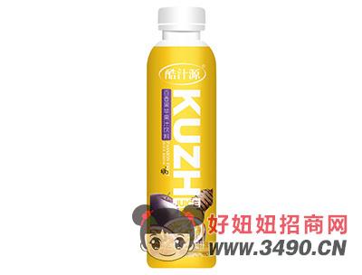 酷汁源猕猴桃苹果复合果汁饮料500ml