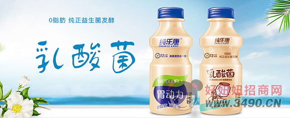 纯乐康72小时发酵胃动力乳酸菌