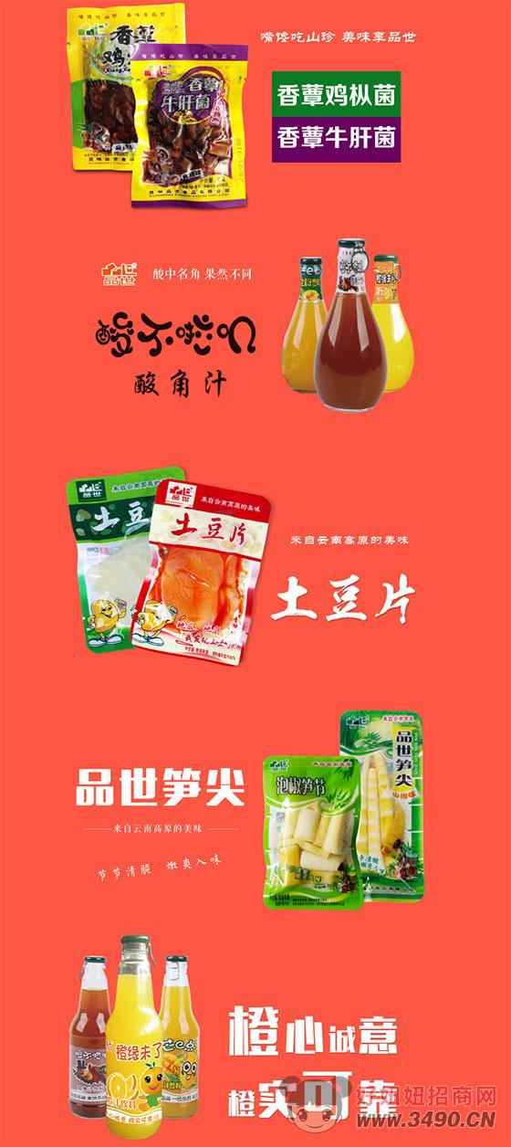 18年专注云南休闲零食菌类、土豆、竹笋产销!