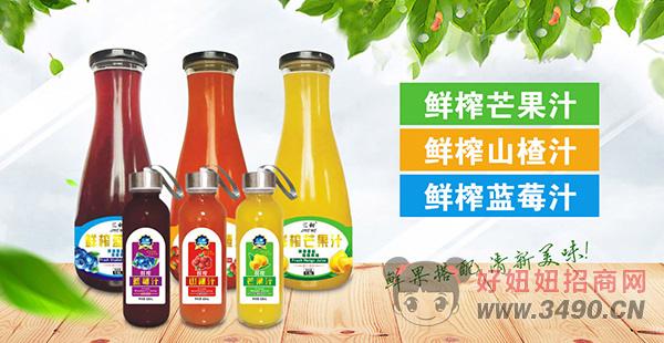 衡水绿源果汁系列饮品,鲜榨原汁,饮品市场中独领风骚