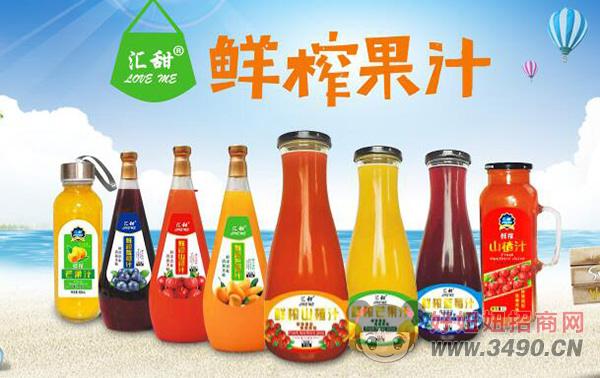 衡水绿源果汁系列饮品