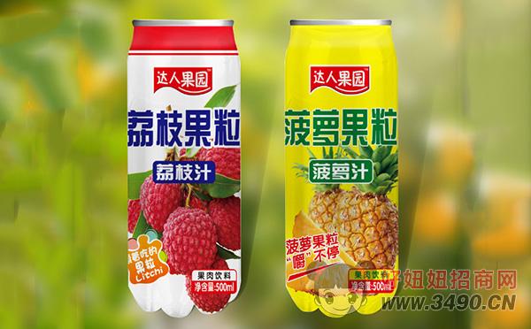 达人果园荔枝果粒、菠萝果粒
