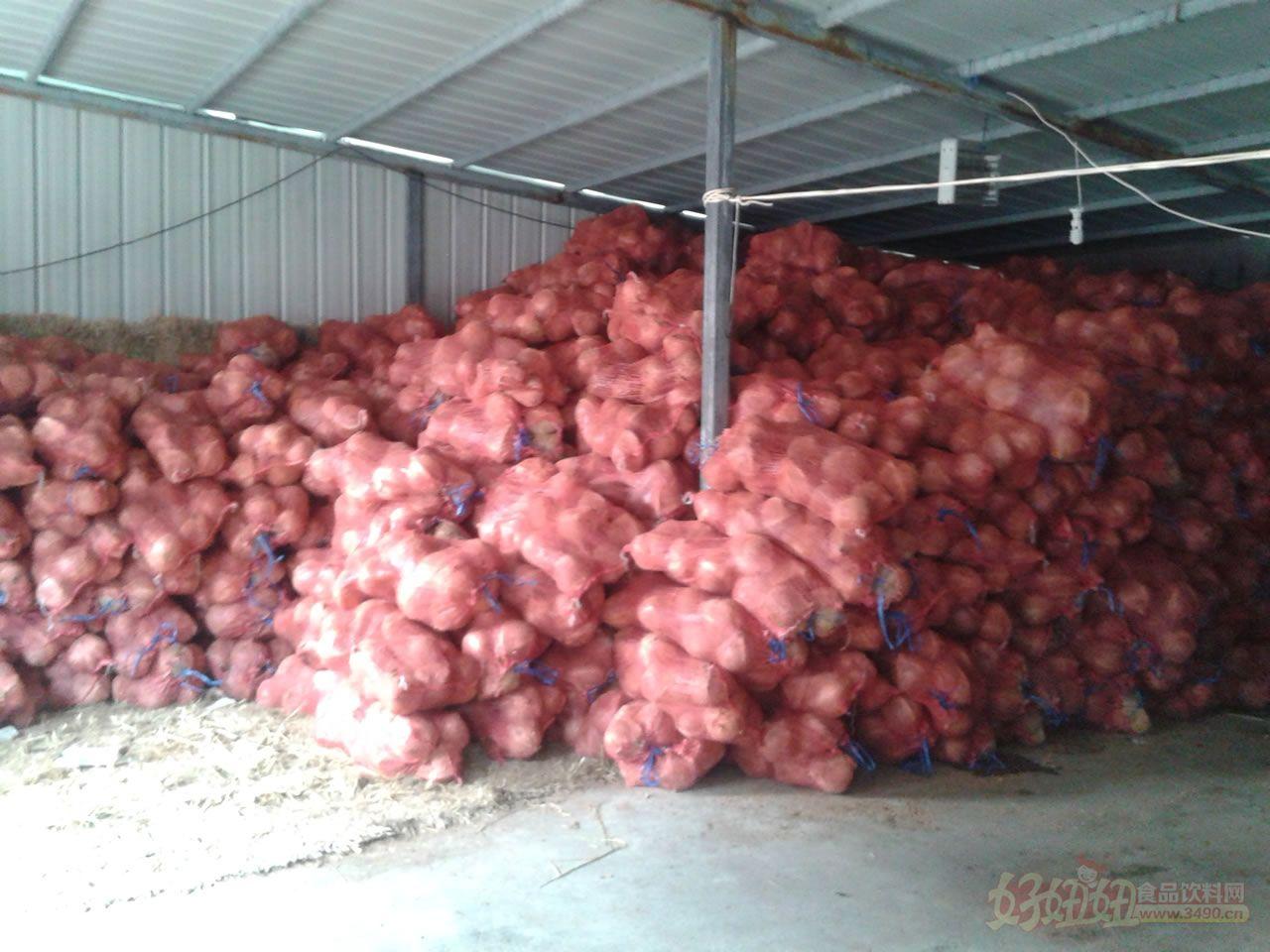 5、存放椰子的仓库