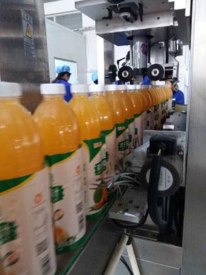 源农芒果汁生产线