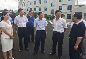 2015年6月郴州市市长瞿海莅临公司考察指导工作