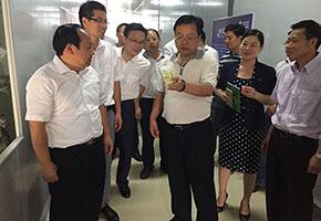 2015年7月郴州市市委书记易鹏飞莅临公司考察指导工作
