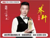荞轩苦荞酒金荞42度500ml毛铺产地大冶新品特价酒厂自营正品保证