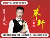 荞轩酒业苦荞酒系列金荞42度*12瓶厂家直发招代理