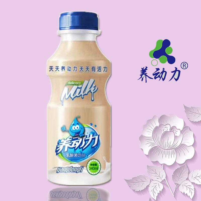 养动力R乳酸菌饮品