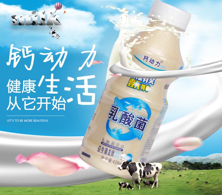 钙动力原味乳酸菌风味饮料428mlx15瓶