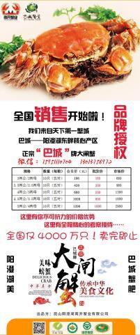 上海普陀长宁徐汇阳澄湖大闸蟹招商加盟市区县代理