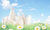 酸奶与牛奶的区别有哪些?