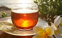 菊花茶什么季节喝最好,菊花茶什么时候喝最好