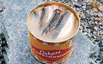 鲱鱼罐头怎么样?为何会这么臭?