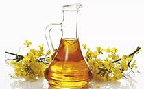 菜籽油吃多了好吗