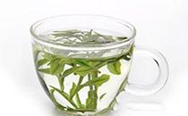 白茶,茶文化背后的功效茶!