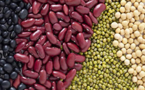 豆子�I�B高,多吃多健康!