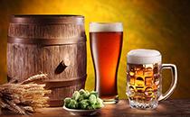 来自啤酒的浪漫,了解啤酒的魅力!