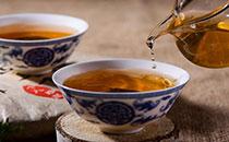 冰岛茶怎么泡?