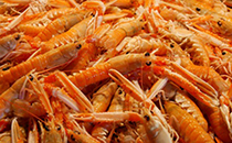 食用小龙虾有哪些好处,吃小龙虾有哪些问题需要注意