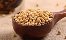 黄豆保质期多久