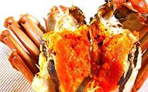 大闸蟹不能和什么一起吃
