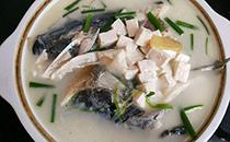 鱼头豆腐汤的鱼头是什么鱼,鱼头豆腐汤用什么豆腐