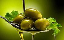 橄榄油与一般植物油有什么区别