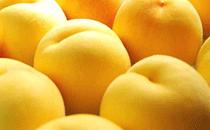 黄桃和水蜜桃有什么区别