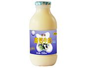 南��乳�I高�}甜牛奶250ml