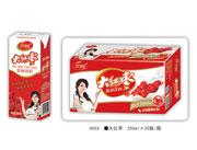 领舞大红枣乳味饮料